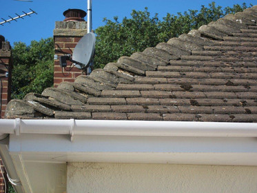 Roof Cleaning & Repairs image